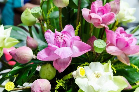The bunch of lotus flowers are decoration for wedding ceremony Stock Photo