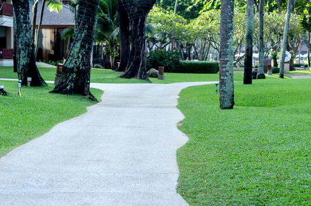 The walkway in a garden with grass and tree