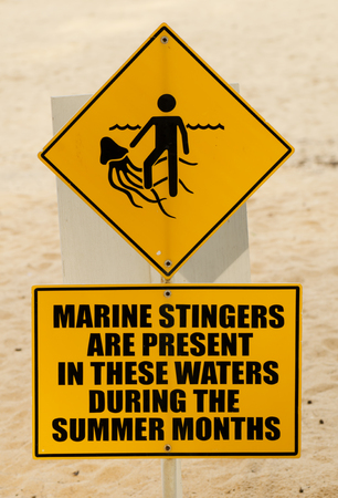 a yellow warning sign marine stingers or jellyfish on the beach Stock Photo