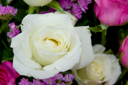 close up bunch of flowers rose decoration