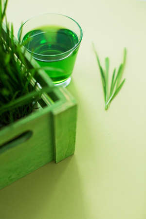Green organic wheat grass drink and young grass in the green wooden box on a yellow background
