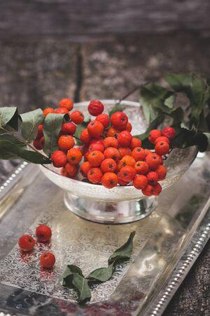 vegetative: rowanberry on a tray on wooden background Stock Photo