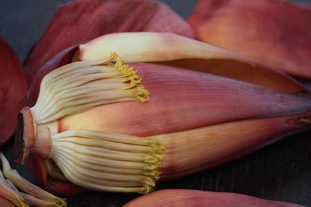 banana blossom photo