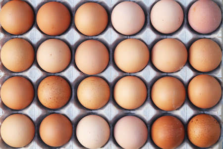 brown eggs: Crates of eggs at farmers market. Stock Photo