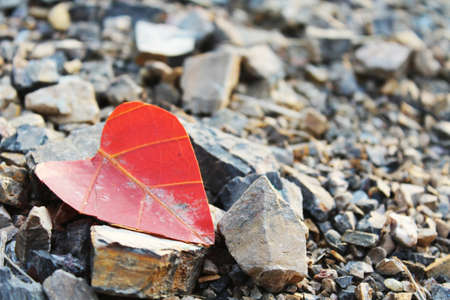 coral colored: Heart on the pavement are the stone. Stock Photo