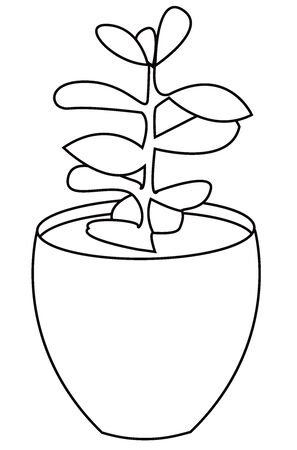 Hand drawn vector illustration of a succulent