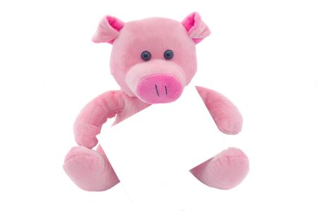 Children's toy a pig with the empty form the isolated Stock Photo - 3858053