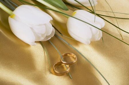Two wedding rings and white tulips on light silk Stock Photo