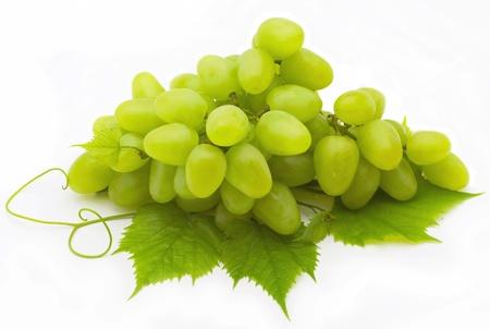 hojas parra: Racimo de uvas Foto de archivo