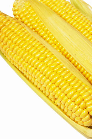 Closeup of yellow corn photo