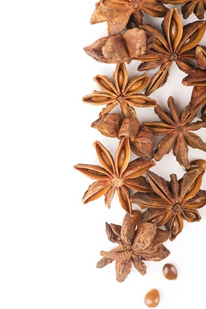 anisetree anise photo
