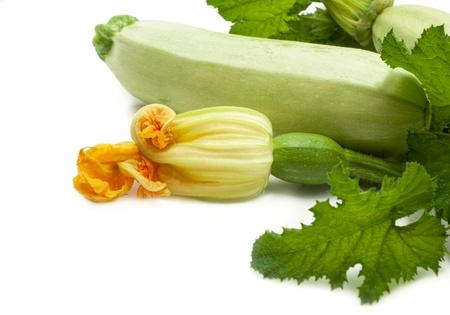 marrow: vegetable marrow with flowers