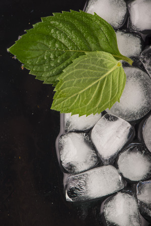 ice cubes, mint leaf on black Stock Photo - 26400545