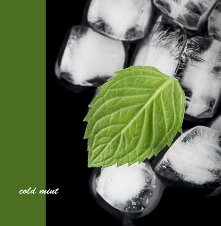 ice cubes, mint leaf on black Stock Photo - 26400571