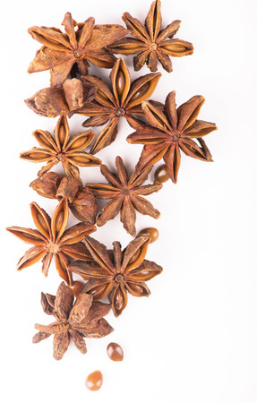 Whole Star Anise isolated on white background with shadow photo