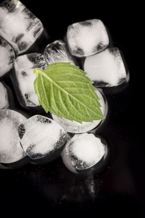 ice cubes, mint leaf on black Stock Photo - 26400594
