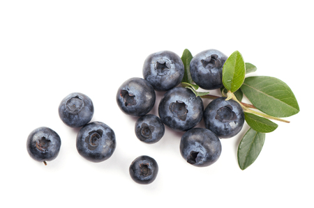 Mature bilberry with green leaves