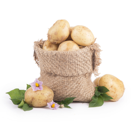 burlap bag: Raw potatoes in burlap bag isolated on white background Stock Photo