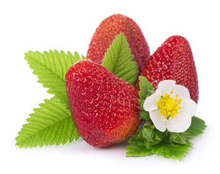 cutouts: Strawberries with leaves. Isolated on a white background.
