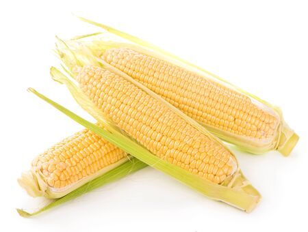 Corn cobs on white background.