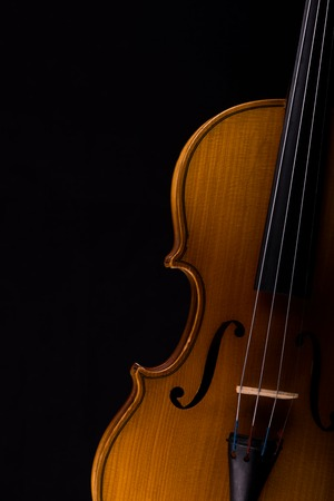 Violin music instrument closeup isolated on black