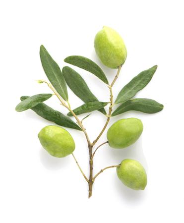 Olivenfrucht und Olivenblätter auf weißem Hintergrund Standard-Bild