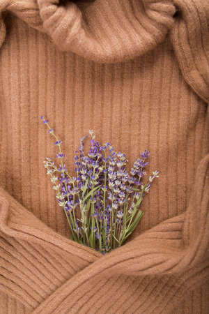 bright cozy woolen background with a bouquet of lavender in hygge style