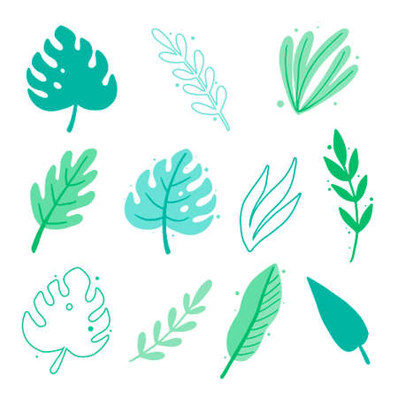 Tropical summer leaf set for wallpaper, greeting card, poster design. Exotic floral decoration of hawaii style. Vector illuatration of trendy style.  イラスト・ベクター素材