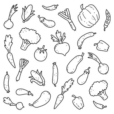 Hand drawn set of vegetable elements, carrot, salad, tomato, onion, lettuce, chili. Comic doodle sketch style. Vegetables element drawn by digital brush-pen. Vector illustration for icon, menu, frame