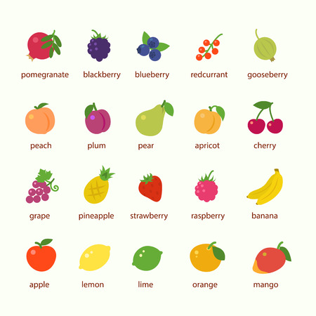 Fruits and berries icon set Çizim