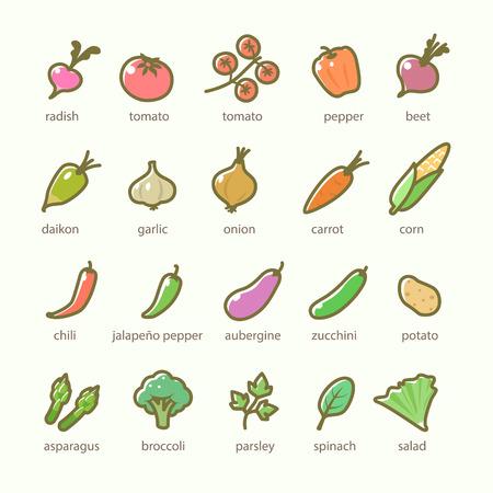 야채와 채소 아이콘의 세트