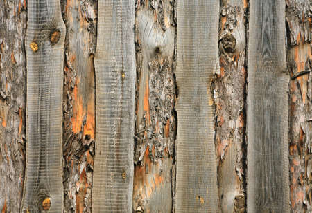 verticals: Wooden fence hammered together from rough pine boards