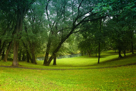 clearing: Beautiful view of wood glade and river