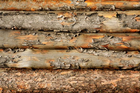 Old wooden fence from rough  laths photo