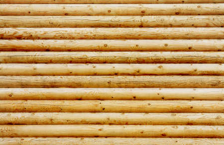 Background wall from new pine logs Stock Photo