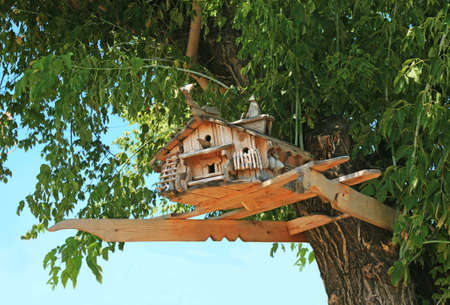 Beautiful exclusive starling house on tree crone Stock Photo - 13655317