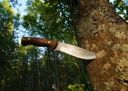 big hunting knife in tree trunk