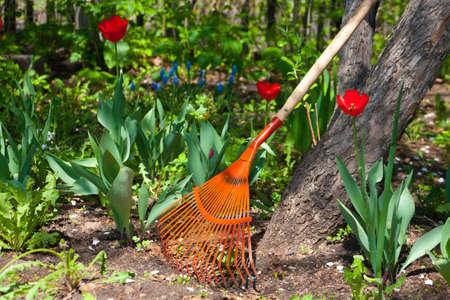 clean cut: Rake at an apple-tree against flowers