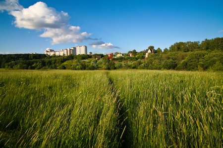 City on background of field with high grass Stock Photo - 15152837