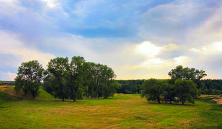 evening landscape with meadow wood and the sky Stock Photo - 15661004