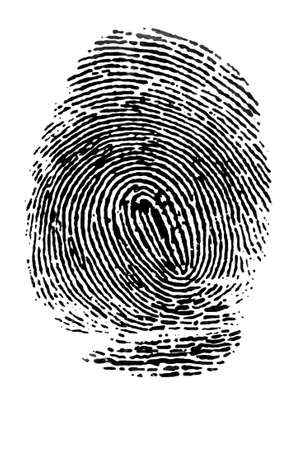 Fingerprint on  white background  closeup photo