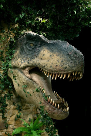 paleontology: head of big dinosaur on black background Stock Photo