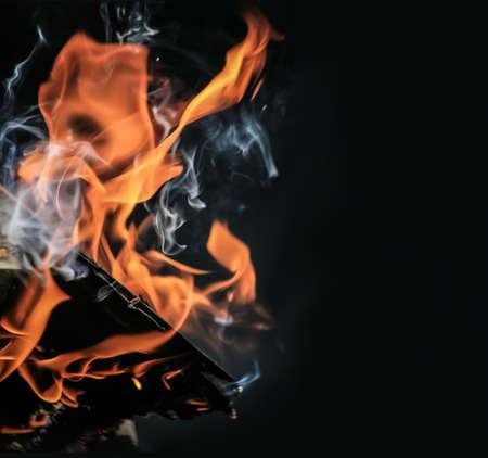 birch firewood brightly burning in fire photo