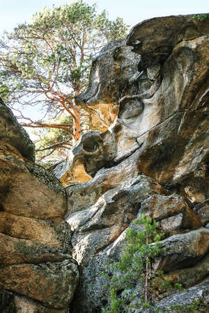 rock with roundish dredging and pine against sky Russia Ural photo
