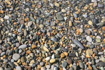 Pebble Beach: oval smooth pebble on the sea coast Stock Photo