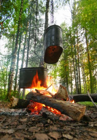 kettles: two kettles on fire on glade in wood Stock Photo