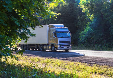 transport truck: big truck moves on country highway