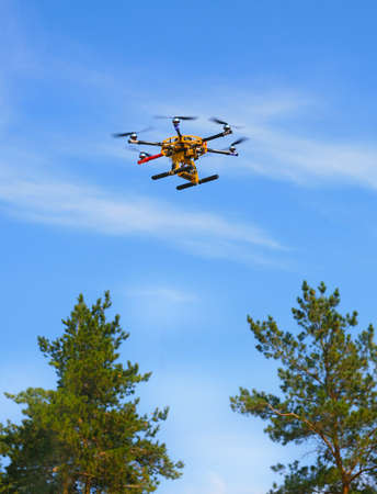 trees photography: copter flying in the sky over the trees Stock Photo