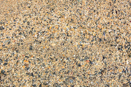 brilliant: Smooth  beautiful wet brilliant sea pebbles on seacoast. Stock Photo