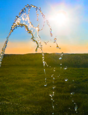 spring water: stream of water over green field